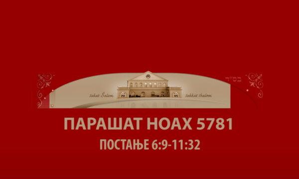 NOAH 5781