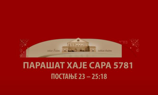 HAJE SARA 5781