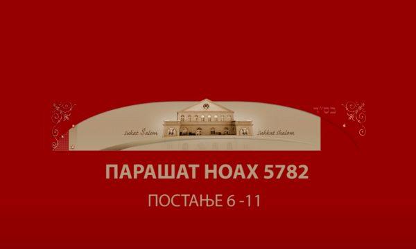 NOAH 5782